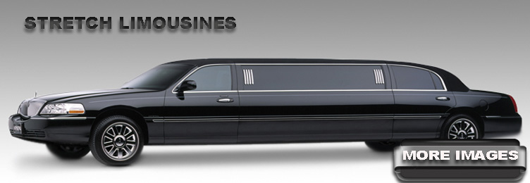 Stretched Limo Fleet
